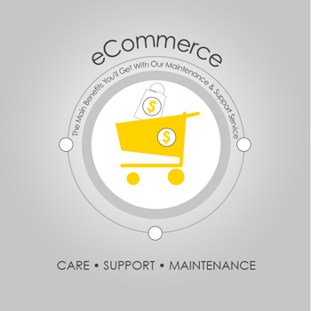 eCommerce website care and support